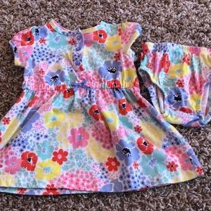 Floral print toddler dress with matching bloomers